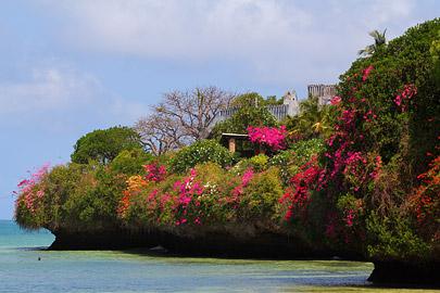 Fotoalbum von Malindi.info - Fotos von Malindi und Umgebung 10/2020[ Foto 49 von 79 ]