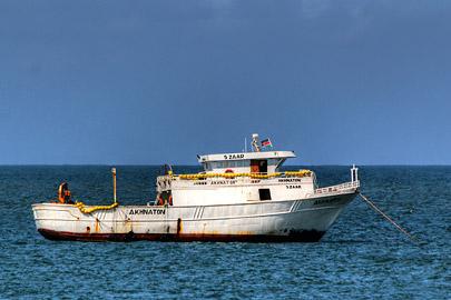 Fotoalbum von Malindi.info - Fotos von Malindi und Umgebung 10/2020[ Foto 60 von 79 ]