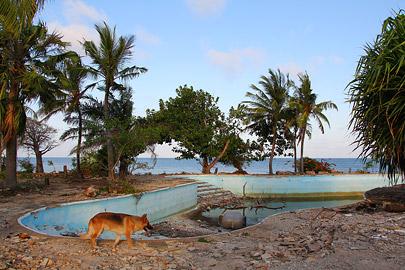 Fotoalbum von Malindi.info - Fotos von Malindi und Umgebung 10/2020[ Foto 67 von 79 ]