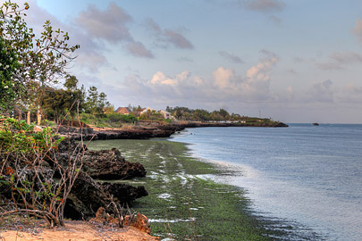 Fotoalbum von Malindi.info - Fotos von Malindi und Umgebung 10/2020[ Foto 69 von 79 ]