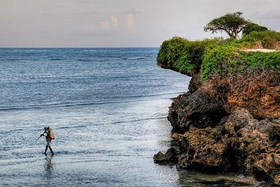 Fotoalbum von Malindi.info - Fotos von Malindi und Umgebung 10/2020[ Foto 73 von 79 ]