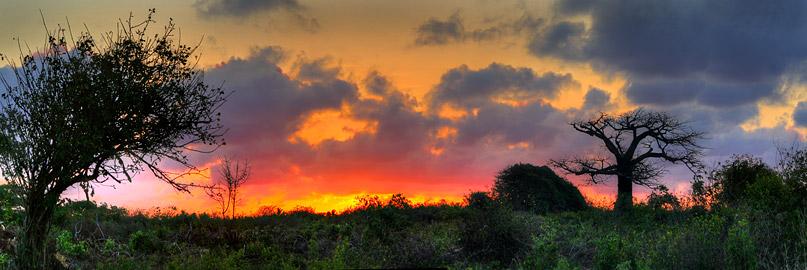 Fotoalbum von Malindi.info - Fotos von Malindi und Umgebung 10/2020[ Foto 78 von 79 ]