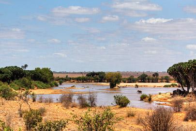 Fotoalbum von Malindi.info - Safari 2 Tage Tsavo East Oktober 2020[ Foto 11 von 84 ]