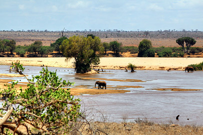Fotoalbum von Malindi.info - Safari 2 Tage Tsavo East Oktober 2020[ Foto 13 von 84 ]