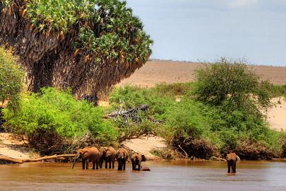 Fotoalbum von Malindi.info - Safari 2 Tage Tsavo East Oktober 2020[ Foto 15 von 84 ]