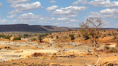 Fotoalbum von Malindi.info - Safari 2 Tage Tsavo East Oktober 2020[ Foto 82 von 84 ]