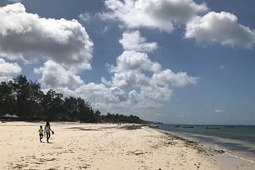 Fotoalbum von Malindi.info - Malindi und Umgebung im Juli und August 2021[ Foto 6 von 79 ]