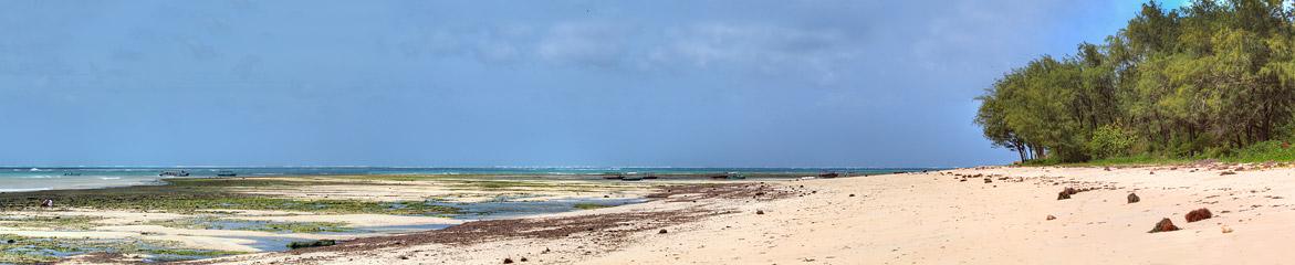 Fotoalbum von Malindi.info - Malindi und Umgebung im Juli und August 2021[ Foto 7 von 79 ]