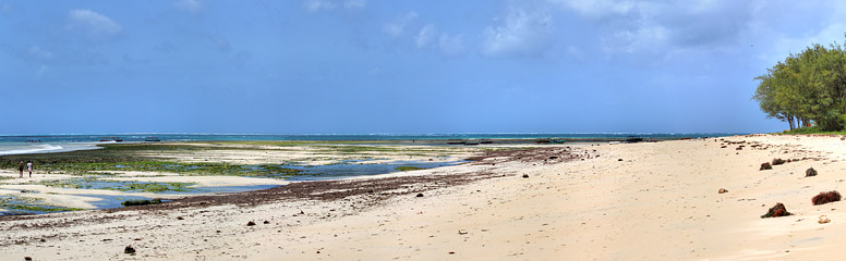 Fotoalbum von Malindi.info - Malindi und Umgebung im Juli und August 2021[ Foto 8 von 79 ]