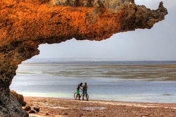 Fotoalbum von Malindi.info - Malindi und Umgebung im Juli und August 2021[ Foto 15 von 79 ]