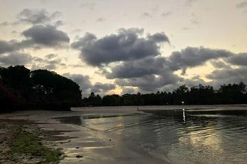 Fotoalbum von Malindi.info - Malindi und Umgebung im Juli und August 2021[ Foto 20 von 79 ]