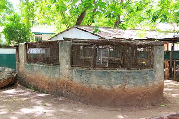 Fotoalbum von Malindi.info - Malindi und Umgebung im Juli und August 2021[ Foto 25 von 79 ]