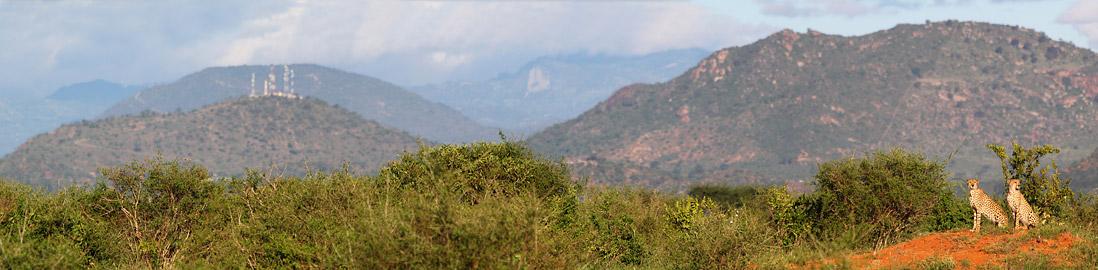 Fotoalbum von Malindi.info - Panorama-Fotos von Malindi.info[ Foto 14 von 50 ]