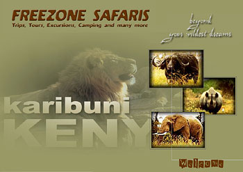 Freezone Safaris