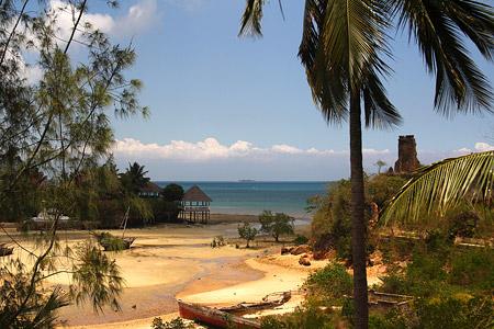 Safari nach Zanzibar (Sansibar) Tanzania - Mangrove Lodge Foto 1