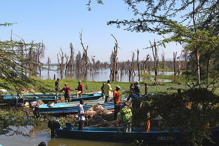 Safari zu einigen Seen im Great Rift Valley - Lake Naivasha Foto 1