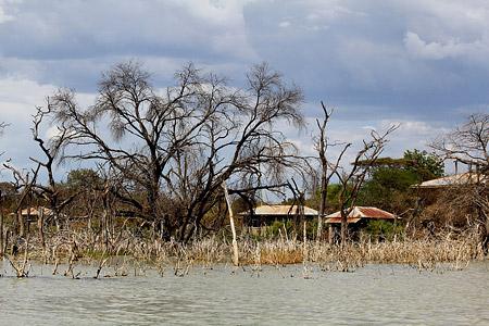 Safari zu einigen Seen im Great Rift Valley - Lake Baringo Foto 3